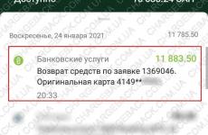 25.01.2021 возврат из Amerom.de 11883 грн