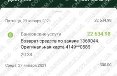 30.01.2021 возврат из amerom.de 22634,98 грн
