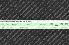 8.02.2021 возврат из amerom.de 959,95 USD