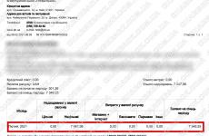 8.02.2021 возврат из amerom.de 7047,99 грн