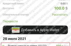 28.07.2021 возврат из VLOM 100 USD